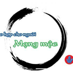 vat pham hop mang moc
